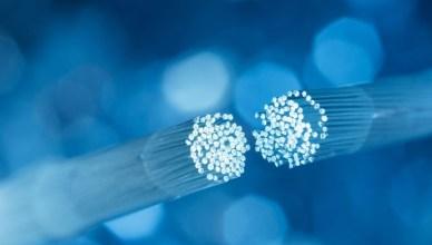 un câble de fibre optique coupé
