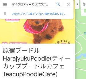 グーグルマップでマイクロティーカップカフェ