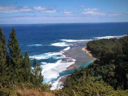 web kauai 2017-03-17 (32)