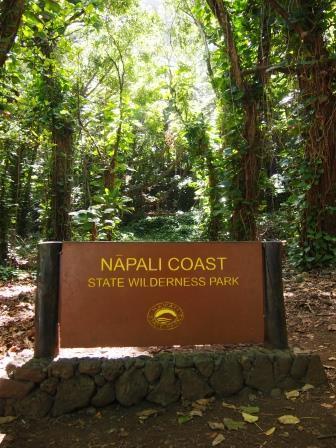 web kauai 2017-03-17 (8)