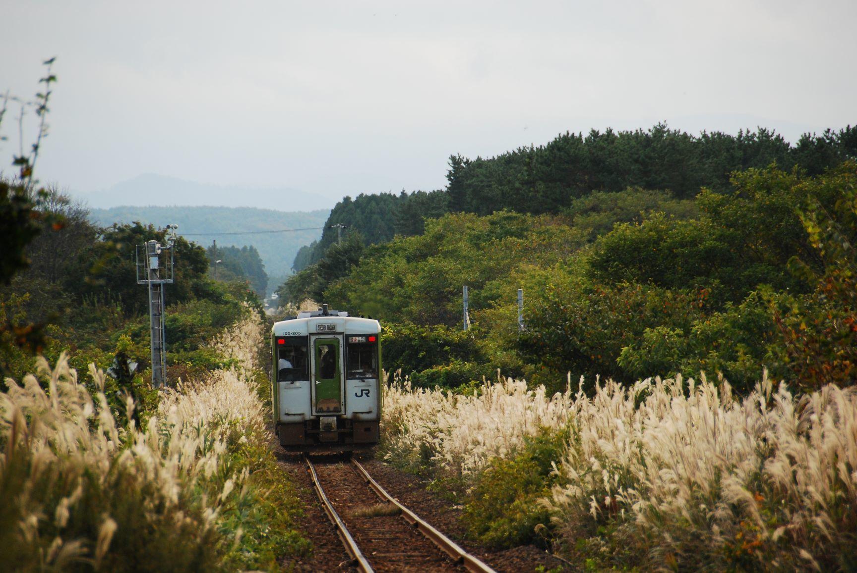 日本一周の駆け抜けた名列車たち(309)快速「しもきた」 - 風,土,植物とレイル