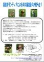 .「譲渡ボランティアによる犬の譲渡会」を開催します!~名古屋市動物愛護センター」