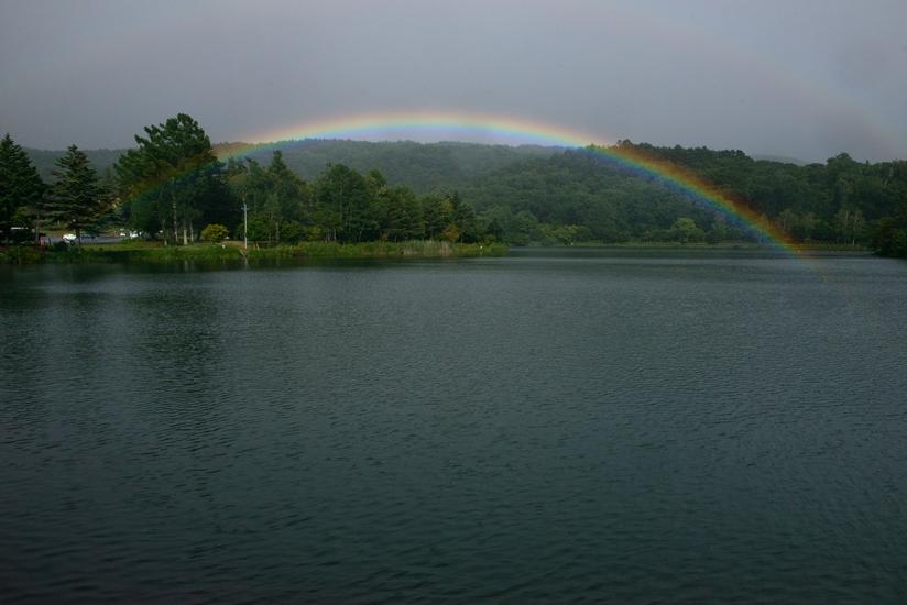 蓼科湖虹 - 蓼 ―たてしな― 科 の 風 光