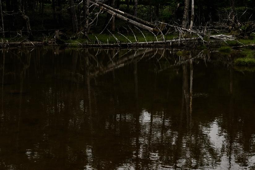 小さな山の池