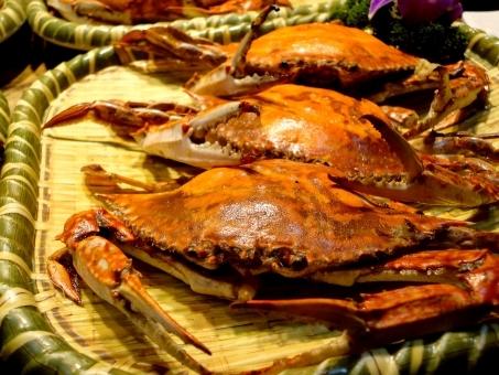 crab357583.jpg
