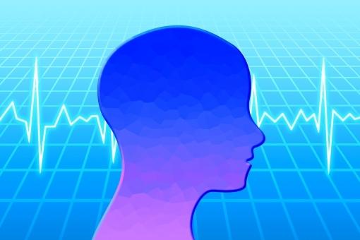human_brain354.jpg