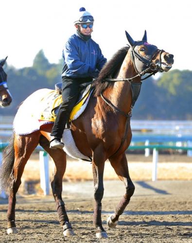 【競馬】横山典弘、33年目の目標は 「ないよ」