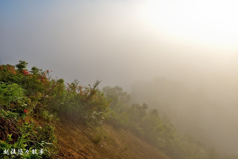 2018.06.08濃霧の日