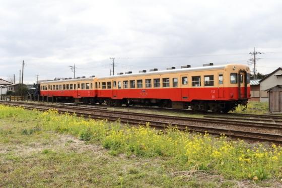 DPP_000123 (3)