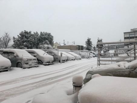 snow3785674.jpg