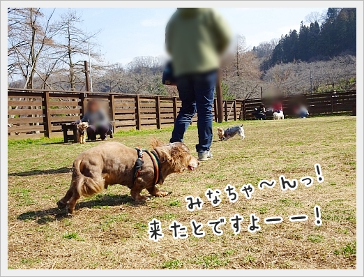 fc2_2019-03-06_02.jpg