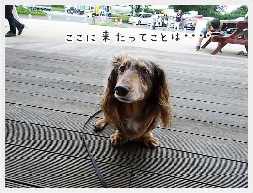fc2_2019-06-28_01.jpg