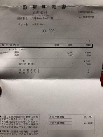 kakoyuki18.jpg