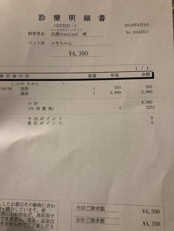 kakoyuki22.jpg