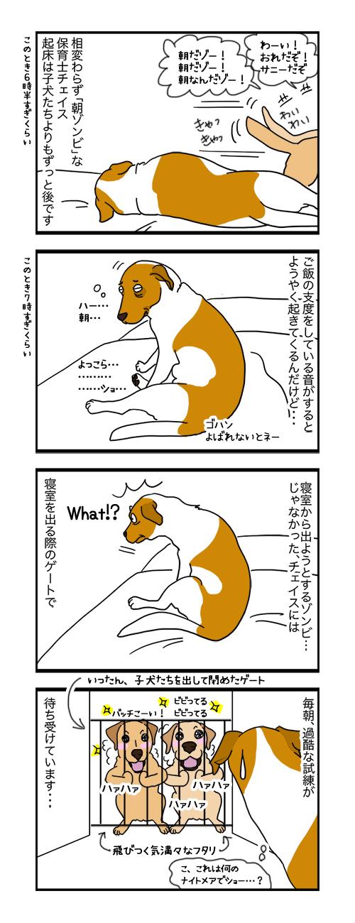 09092019_dog4koma.jpg
