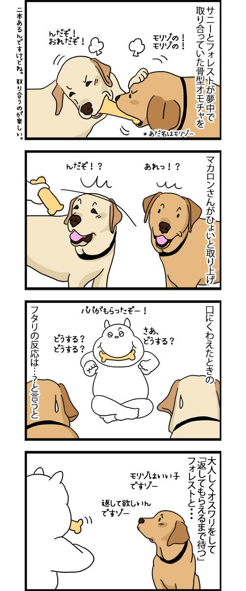 13022020_dogcomic_1.jpg