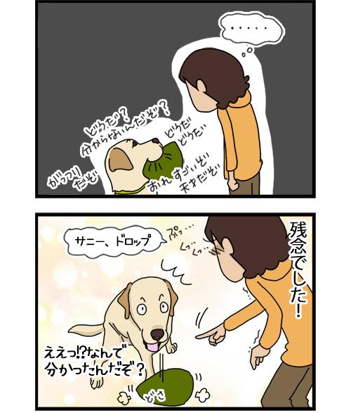 05112020_dogcomic_2.jpg