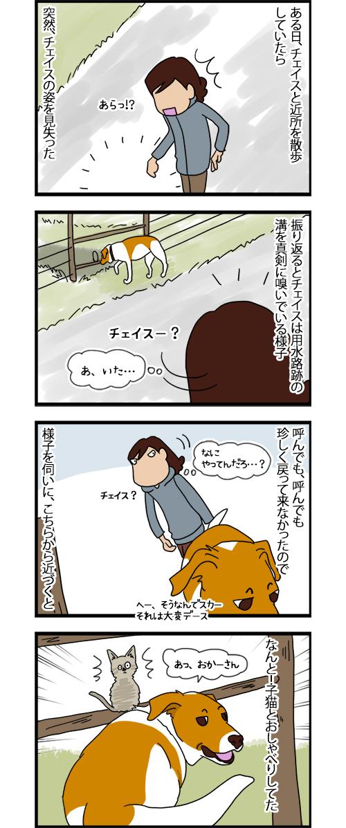 11082020_dogcomic_1.jpg