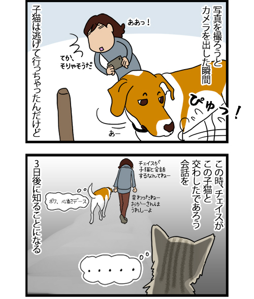 11082020_dogcomic_2.jpg