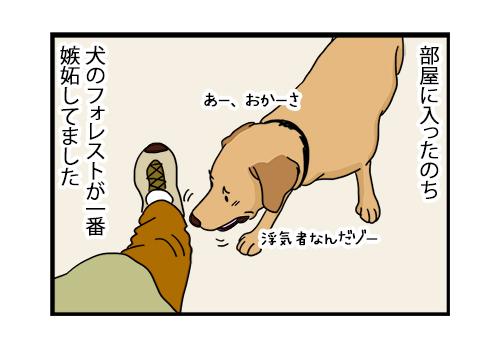 18082020_dogcomic_Forrest.jpg