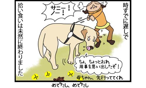 20102020_dogcomic2.jpg