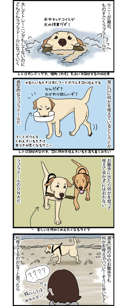 29062020_dogcomic_1.jpg