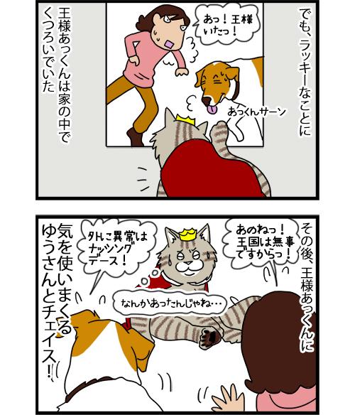 30072020_dogcomic_2.jpg