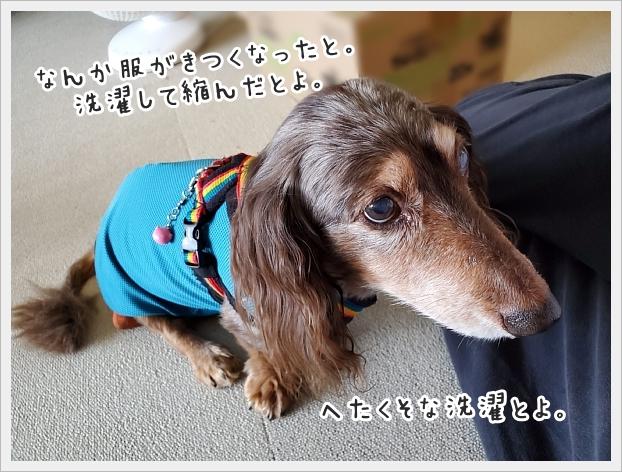fc2_2020-09-02_06.jpg