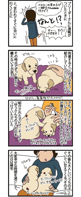 02062021_dogcomic_1.jpg