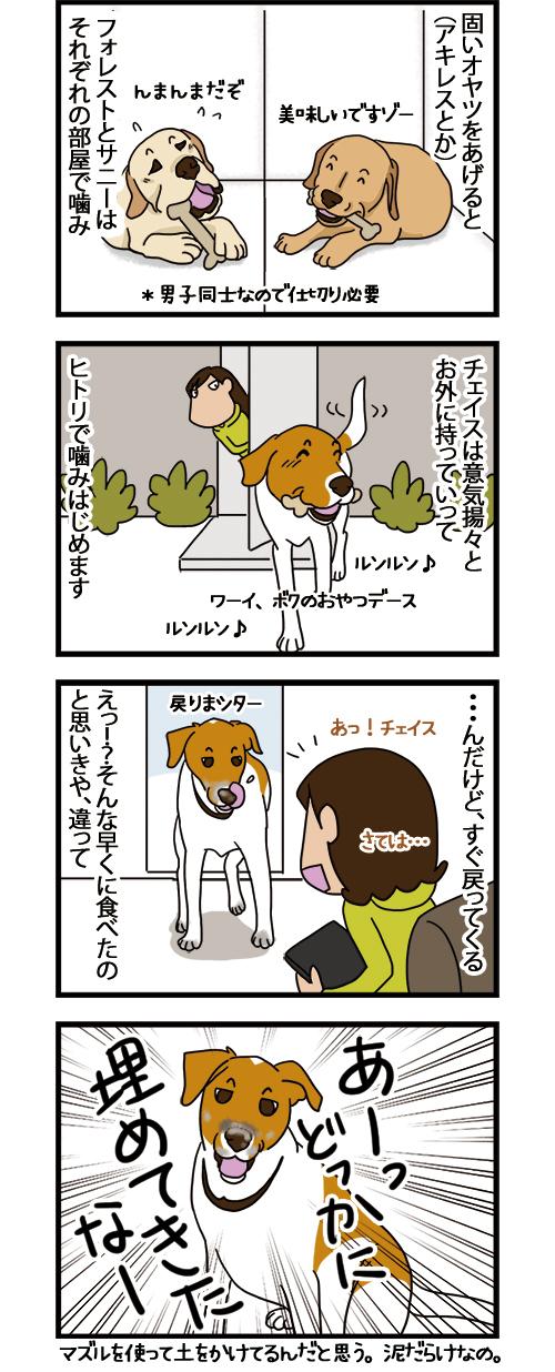 05032021_dogcomic_1.jpg