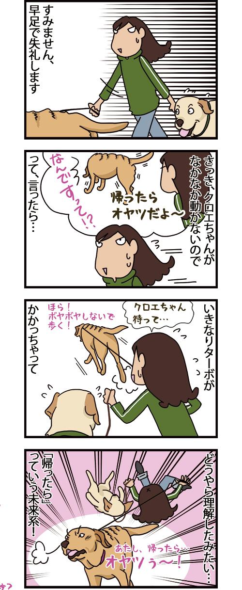 11052021_dogcomic.jpg