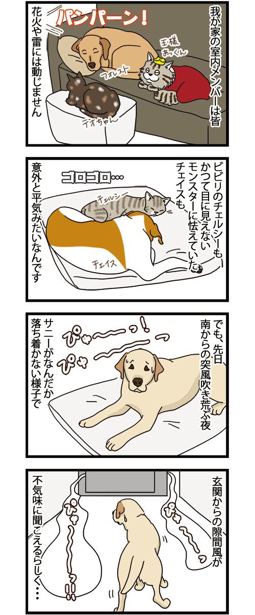 17052021_dogcomic_1.jpg
