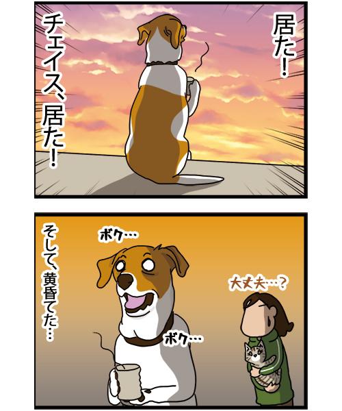 21022021_dogcomic_2.jpg