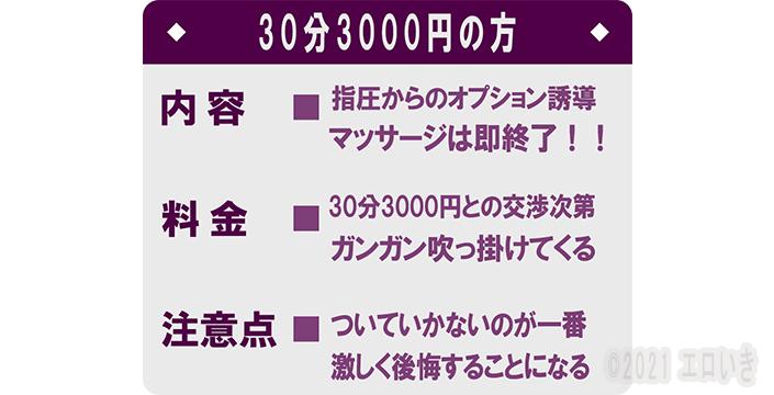 fc2ブログ20210310-005