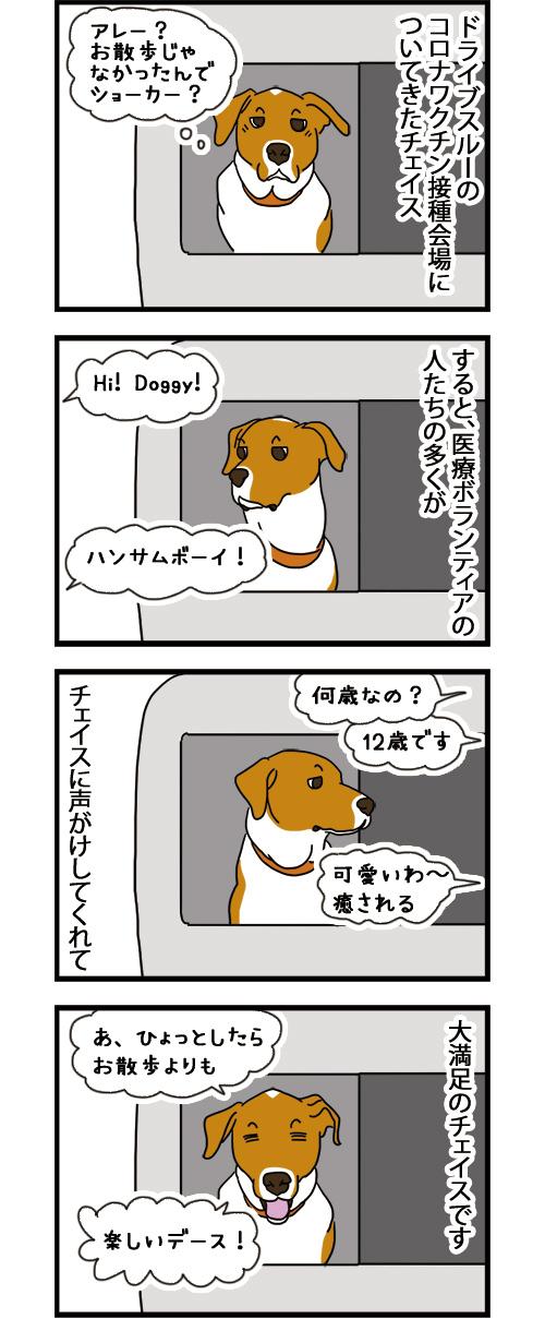 05092021_dogcomic.jpg