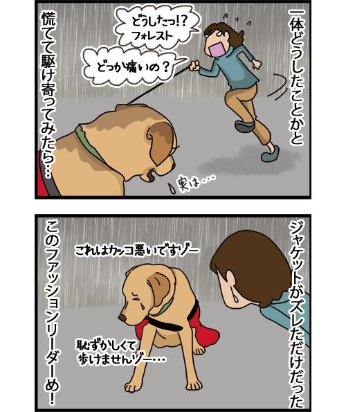 07072021_dogcomic_2.jpg