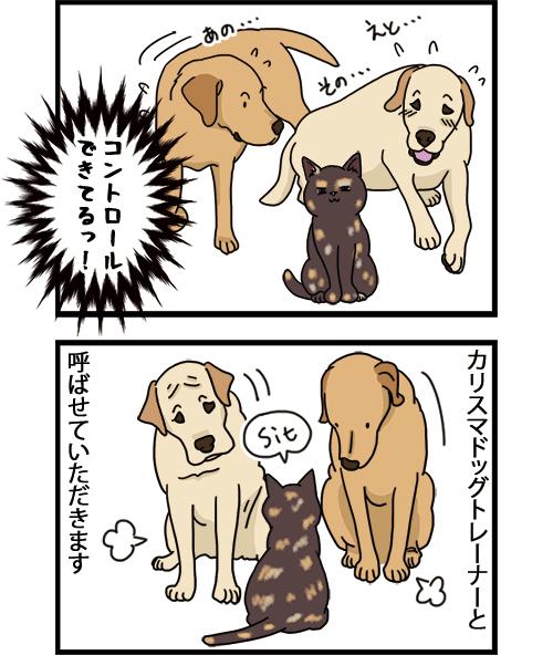 15072021_dogcomic_2.jpg