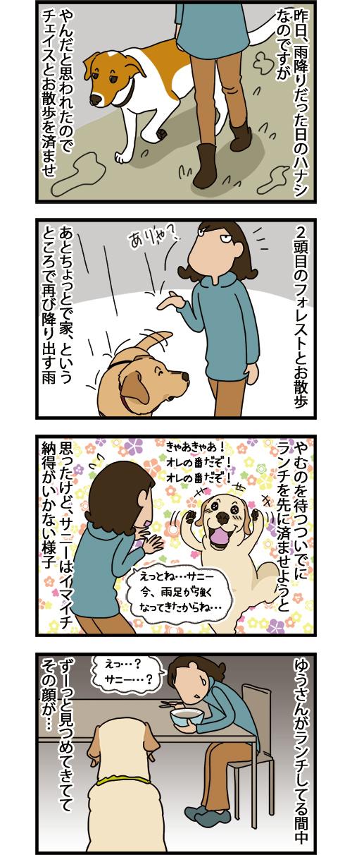 18082021_dogcomicB_1.jpg