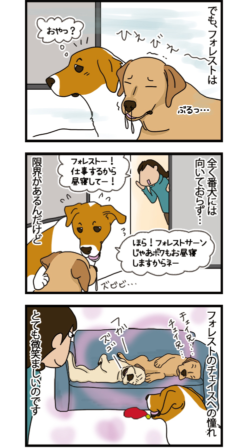 24062021_dogcomic_2.jpg