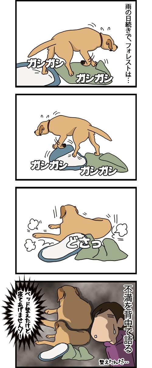 28062021_dogcomic_mini1.jpg