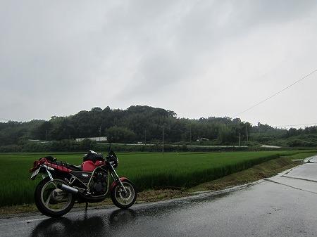 田んぼ 2