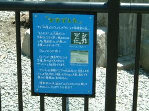 asahikawa+033_convert_20100604212522.jpg