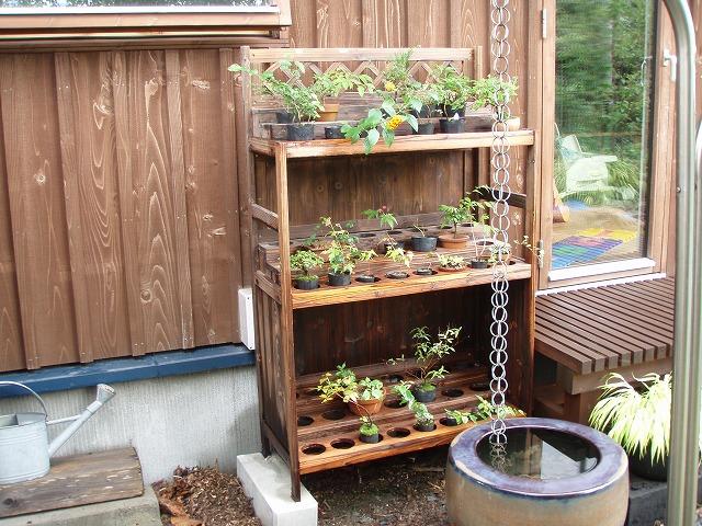 盆栽用に棚をもらった - DIYと木工と園蕓なまいにち