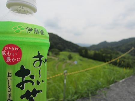大山千枚田 5