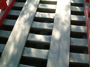 matushima+007_convert_20110309122326.jpg