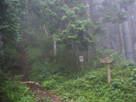 道志みち林道1
