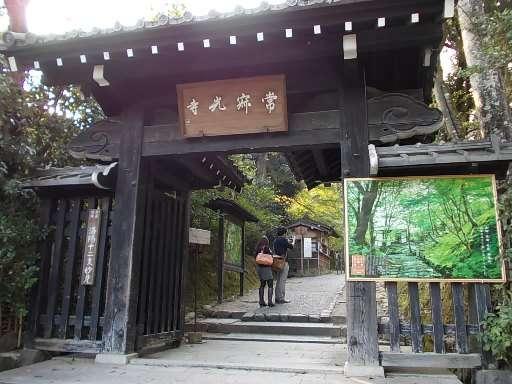 旅するたましい |京都へ行ってきました(2)