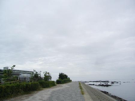 荒崎港 1
