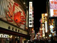 Japan Trip Guide