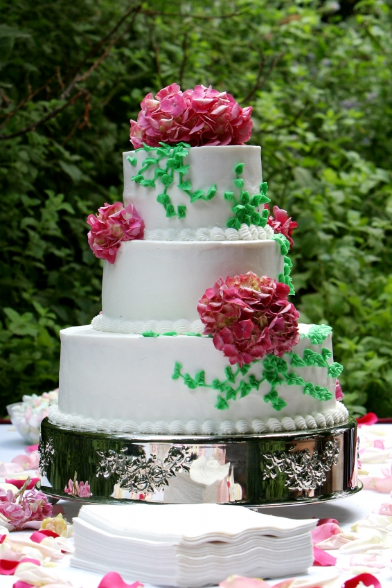 Cake Decorating Ideas For Fantastic Looking Cakes Herohymab